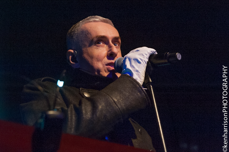 Holly Johnson-12